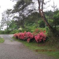 6月温泉整備・調整の御休み日程・・・ブログ更新しました!