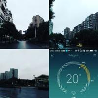 止まない秋雨を眺める熊は黒羊所属・・・ #上海
