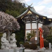 雛の日の神社