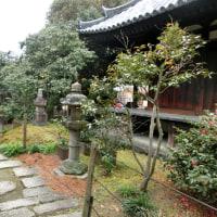 奈良三名椿