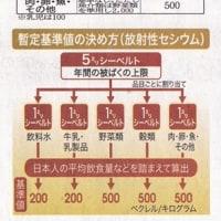 20110910下野新聞 栃木の現状 食の安全特集(5)飲食物の安全基準