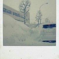 2013/02/21「大遅刻」と「ソラニン」