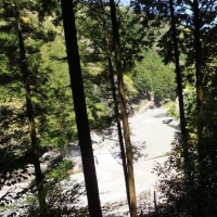 新緑の奥河内から桜満開の滝畑ダムを経て、蔵王峠から「紀州堀越癪観音」へ御参り 2017年4月28日 その1