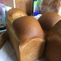 早起き パン焼き