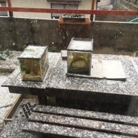 九州にも寒波が襲ってきた。