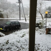 天気予報当り 那須は雪になりました