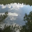 川面に写る空