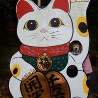 コロの ママ・姉独占お出かけ 1 (やきもの散歩道)