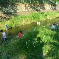 人もワンコもいっぱいの河原で遊んで