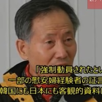「性奴隷」を否定した韓国人教授の勇気 日韓両国における「慰安婦問題」の鎮静剤になるか