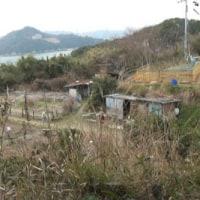 愛媛県への島旅 96回目