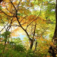 秋彩の水辺。