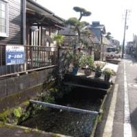 静岡の懐かしい日々