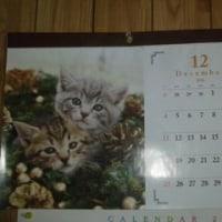 カレンダー~うにの秘密気をを買った。