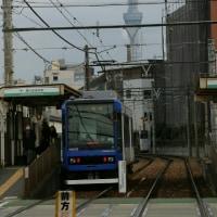 都電と都会のメジロ