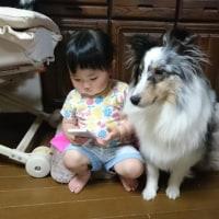 今日まで1歳(^ω^)