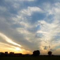 ワンパターンは重々承知で…多摩川冬の夕暮れ写真