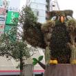 ●7/18と7/25 環境の緑化と美化報告