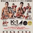 Kick K-1GP 14。