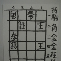 詰将棋第十番<解説> 詰将棋パラダイス平成27年11月号「新人コンクール」