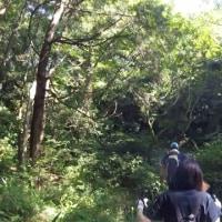 星田冒険倶楽部! 爆笑(^。^)多摩川を渡るNo1