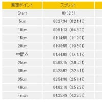 第2回さいたま国際マラソンに参加・・・、撃沈・・・