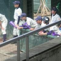 第98回全国高等学校野球東東京大会 板橋VS巣鴨