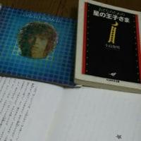 『おとなのための星の王子さま』 ちくま学芸文庫