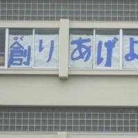 運動会の風景【5月29日(月)】
