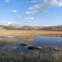 晴天の八島湿原