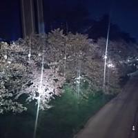 北海道の春は今から来ます