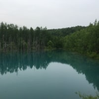 北海道美瑛町  青い池!