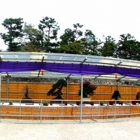 10月中旬・名古屋城秋の盆栽展他