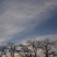 2月18日、午前7時過ぎの空模様