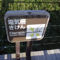 No.1.030 「知床五湖展望台」のお話。