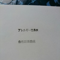 Vacance新聞 ((+_+))