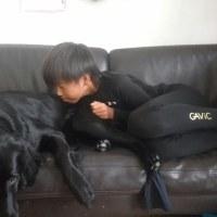 黒犬ごっこ??