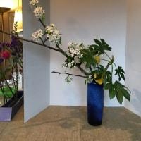 瓶花 自由花 梨 やつで チューリップ