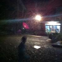 千葉は雪が降っているそうです!!