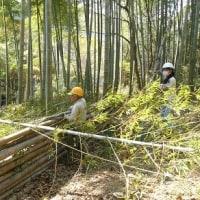 続日本100名城 「滝山城跡」 下草刈りボランティアさん募集 毎月第3日曜日