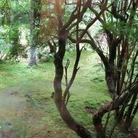 数寄屋造り離れにて会席料理をいただきました!・・・奈良富雄 百楽荘