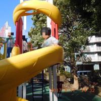 公園がリニューアルオープン‼️