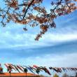 ポートピアは春と初夏!