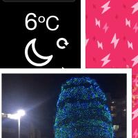 ☆もう!!クリスマスツリーの季節ですね!☆