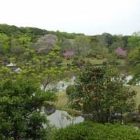 万博公園 (9)