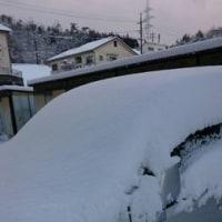 12年ぶりの雪かき