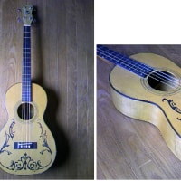 Regal Tenor Guitar (1930\'s)