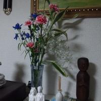 切り花延命剤でいつまでも花を美しくしよう!!