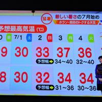 6/29 森田さんの この温度、覚悟がいる?