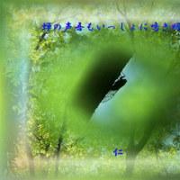 『 蝉の声吾もいっしょに鳴き明かす 』青のくさみ交心rs1304